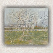 Orchard in Blossom